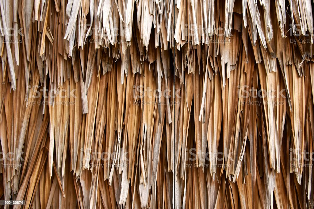 Dry leaf wall on the hut background. Old leaves texture thatch. DIY, folk wisdom. Close up. royalty-free stock photo