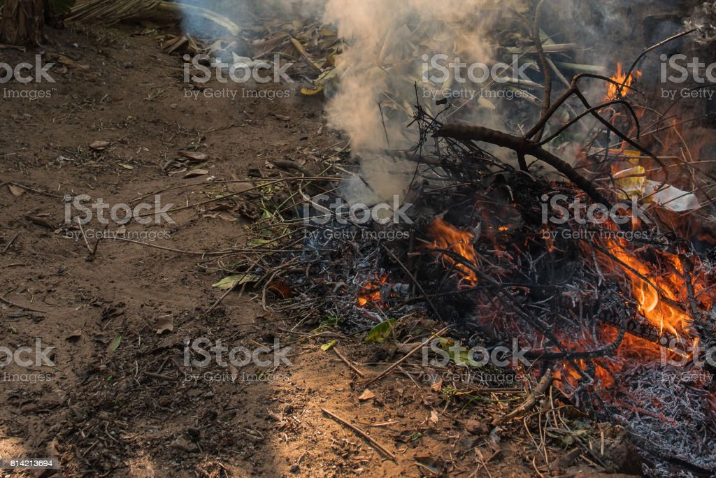 Dry leaves burning with red yellow flames in a pit giving out smoke stock photo