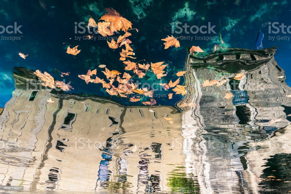 Dry leaves floating on water reflecting an old scaligero castle on Lake Garda, Italy. stock photo