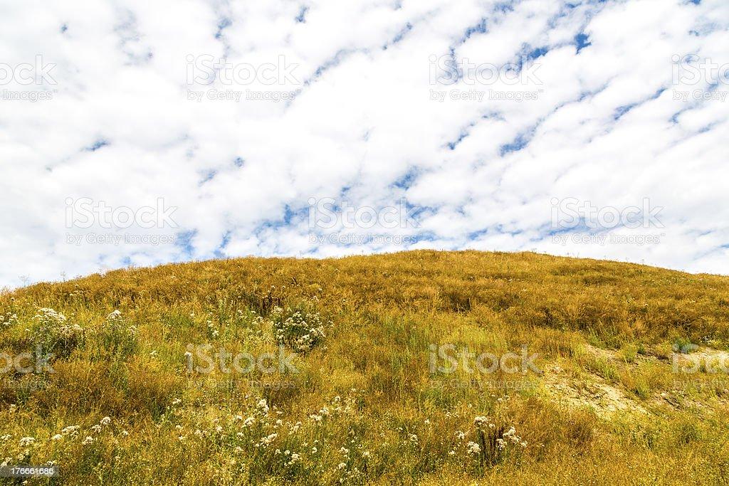 dry meadow sobre una colina, en verano, con el cielo nublado foto de stock libre de derechos