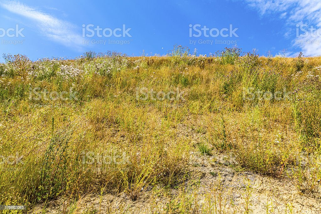 dry meadow on a hill in summer, with cloudy sky royalty-free stock photo