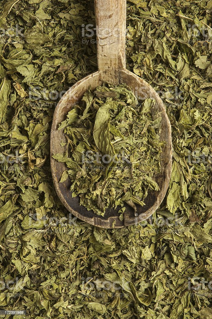 Dry Mint royalty-free stock photo