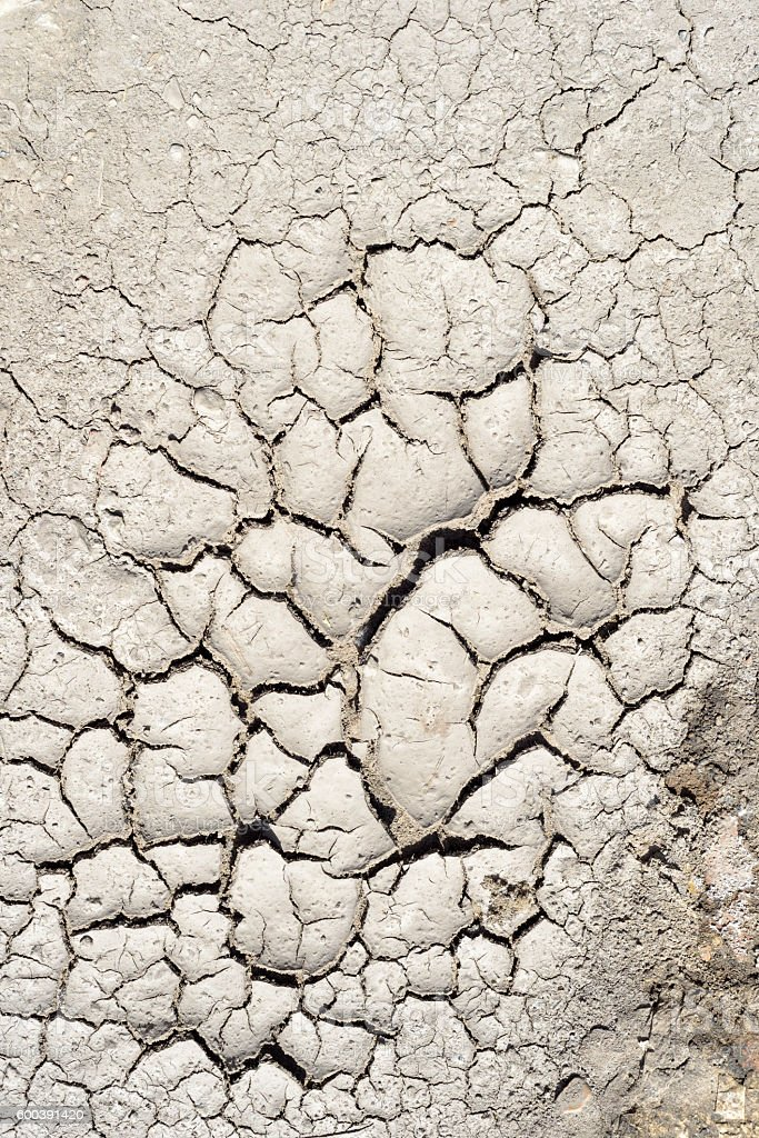Dry Mud Cracked Riverbed stock photo