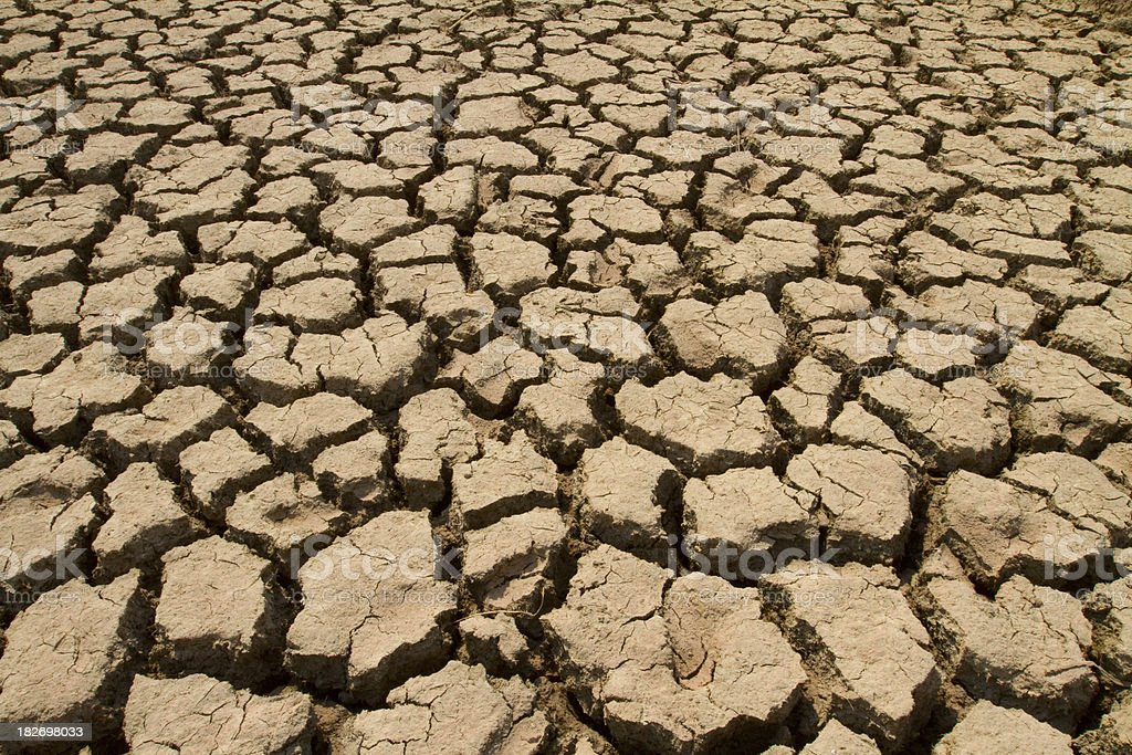 Dry Mud Field royalty-free stock photo