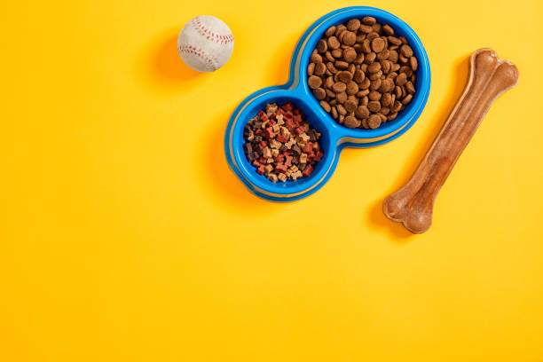 dry pet food in bowl with a ball and dog bone on yellow background top view - lata comida gato imagens e fotografias de stock