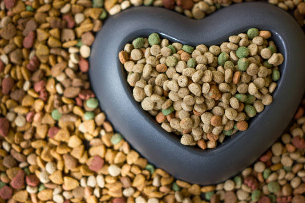 Dry pet food with big heart bowl and place for your text. stock photo
