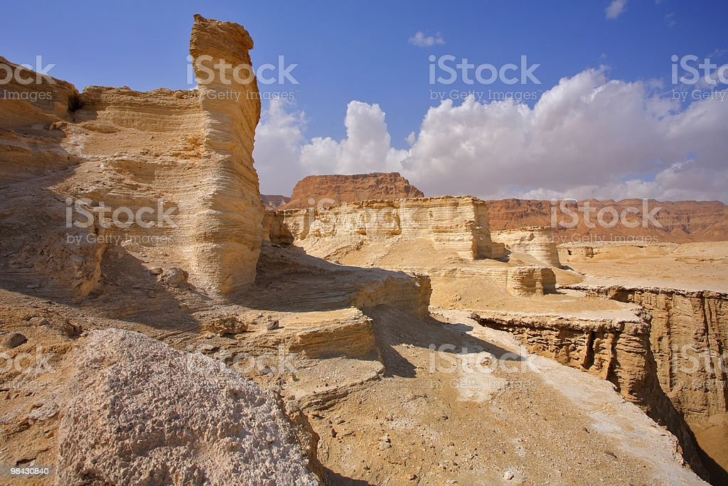Dry picturesque canyon in desert royalty-free stock photo
