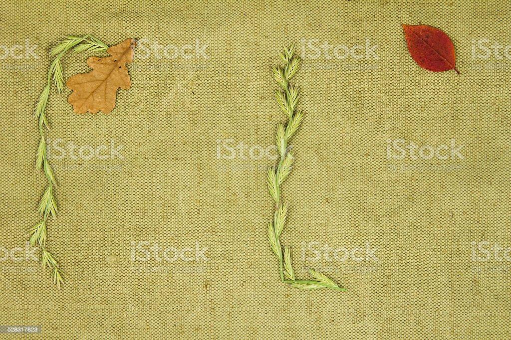 Trockene rissige Pflanzen auf grünen Tuch. – Foto