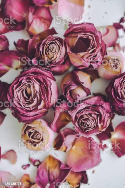 Dry red roses textured background close up petals wilted picture id1139138278?b=1&k=6&m=1139138278&s=612x612&h=xai9kttkfttkyl5yzydsl4eunuifk xfye csbczd1g=