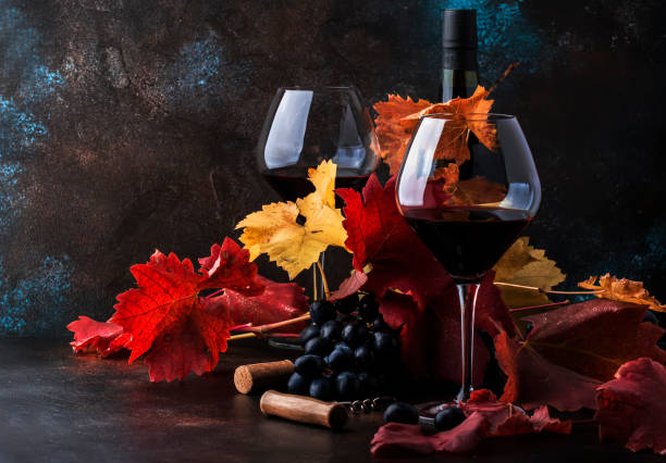 Dry Red Wine in big wine glass, autumn still life with leaves, wine tasting concept, rustic style, selective focus Dry Red Wine in big wine glass, autumn still life with leaves, wine tasting concept, rustic style, selective focus merlot grape stock pictures, royalty-free photos & images