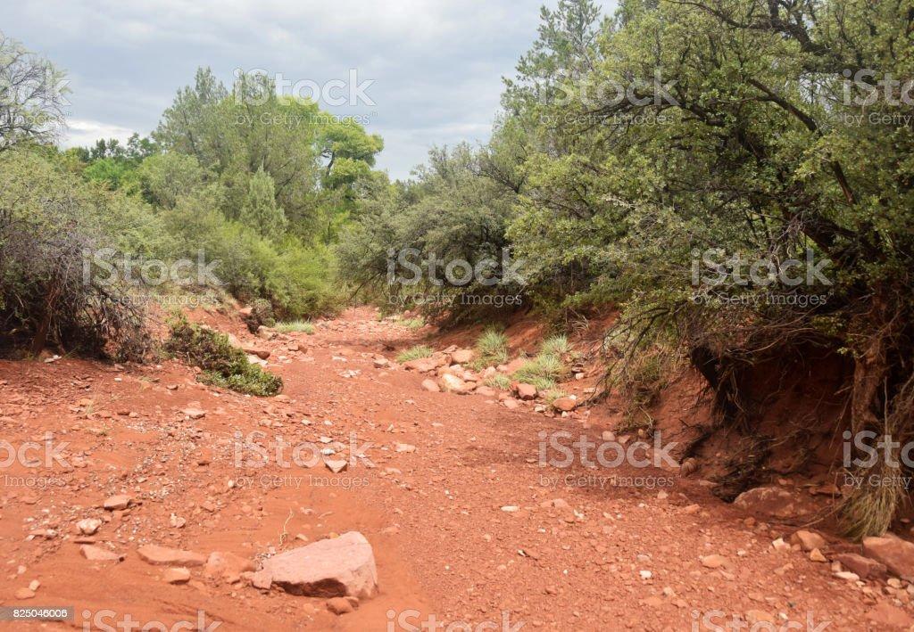 Dry river bed in Arizona stock photo