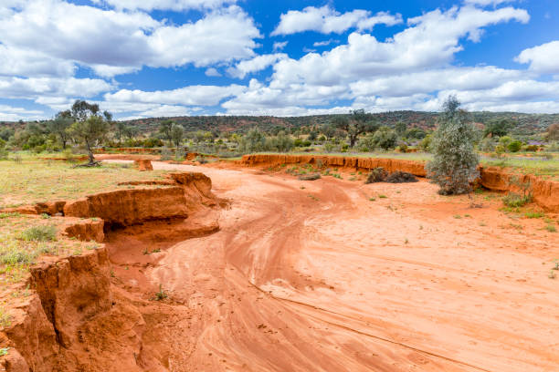 dry river bed - desiccation stock pictures, royalty-free photos & images