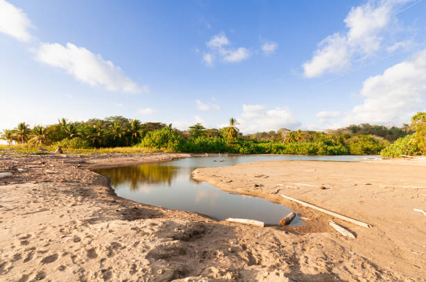 Dry river mouth at the coastline of southern Costa Rica stock photo