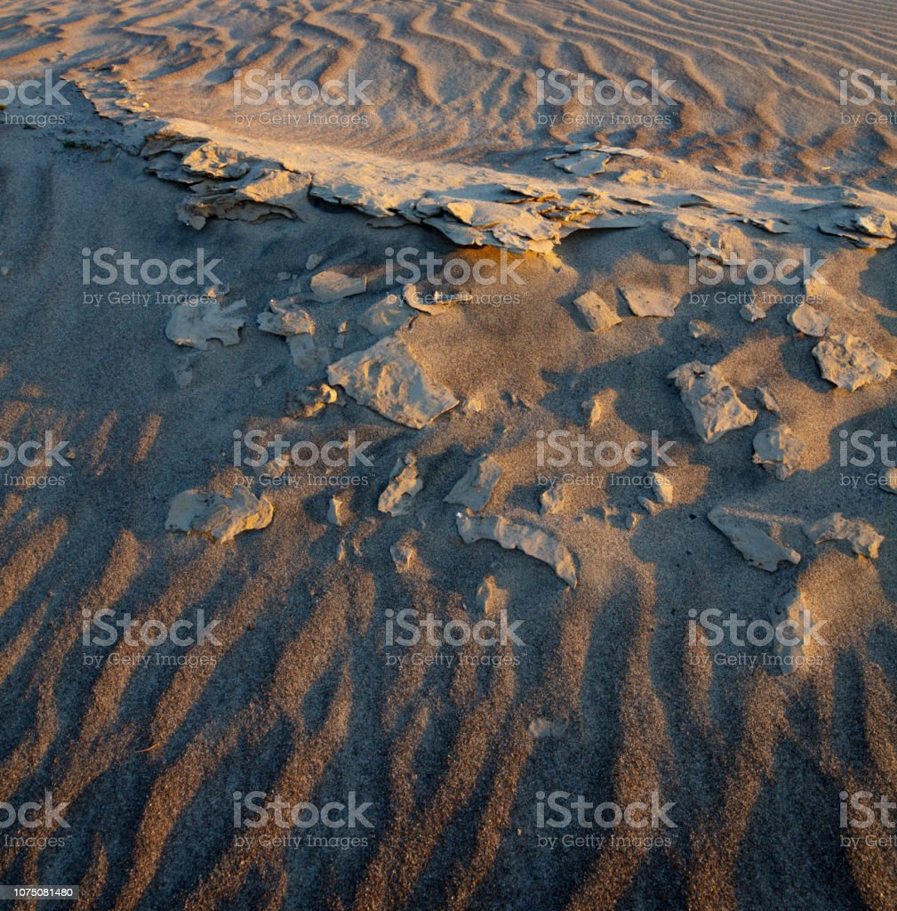 The riverbed of the Columbia River during the dry summer months.