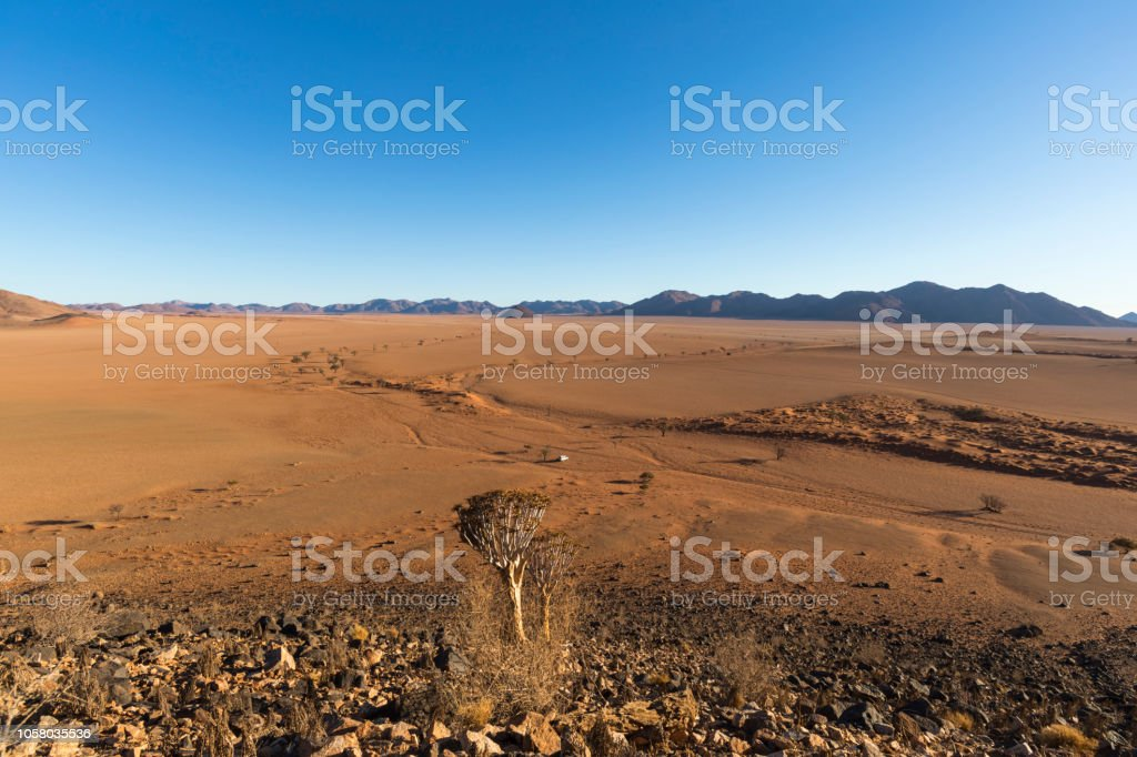 Dry riverbed in the desert Namibia