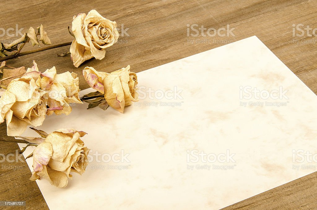 dry roses on vintage paper royalty-free stock photo