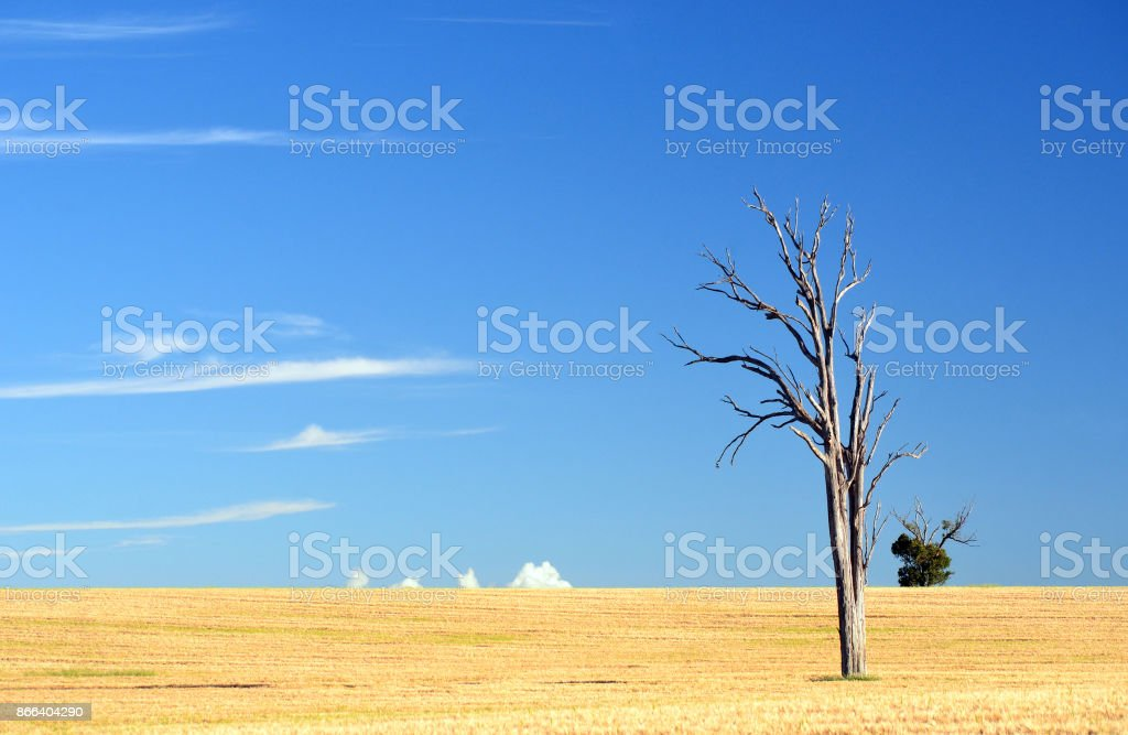 Dry rural agricultural landscape stock photo