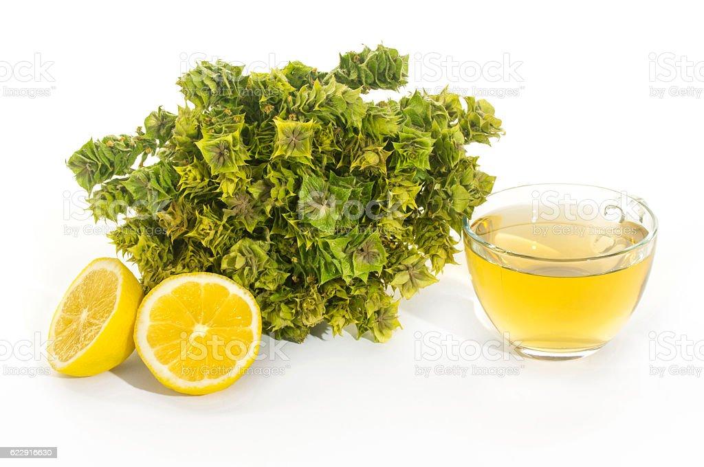 Dry sage tea and lemon isolated stock photo