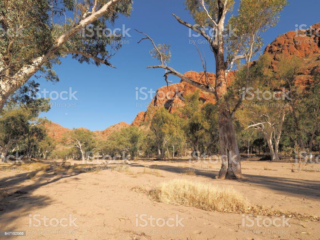 Dry sandy river bed of Trephina river near Trephina Gorge stock photo