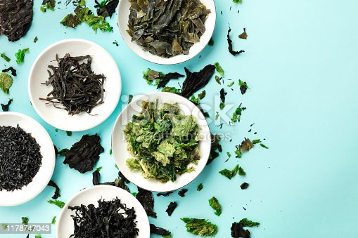 Dry seaweed, sea vegetables, top shot on a light blue background with a place for text
