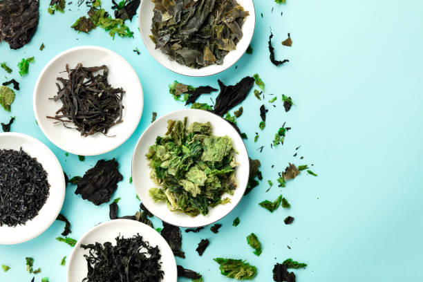 Dry seaweed, sea vegetables, top shot on a light blue background with a place for text stock photo