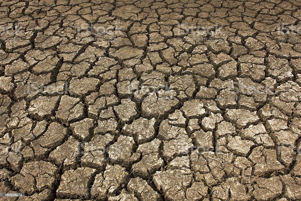 Dry soil Arid royalty-free stock photo