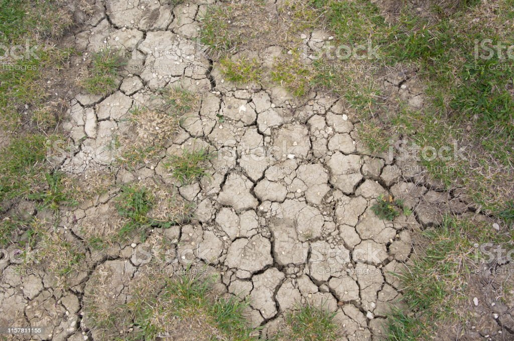 dry soil summer drought background