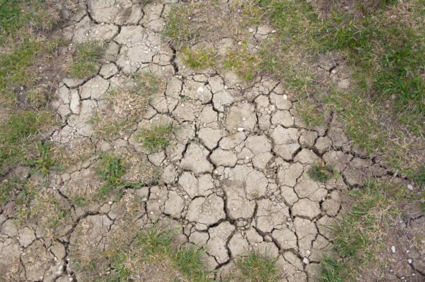 sucha gleba letnia susza - erodowany zdjęcia i obrazy z banku zdjęć