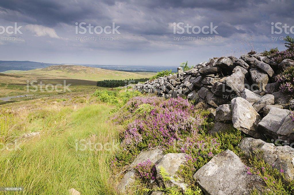 Dry stone wall on Simonside Hills stock photo