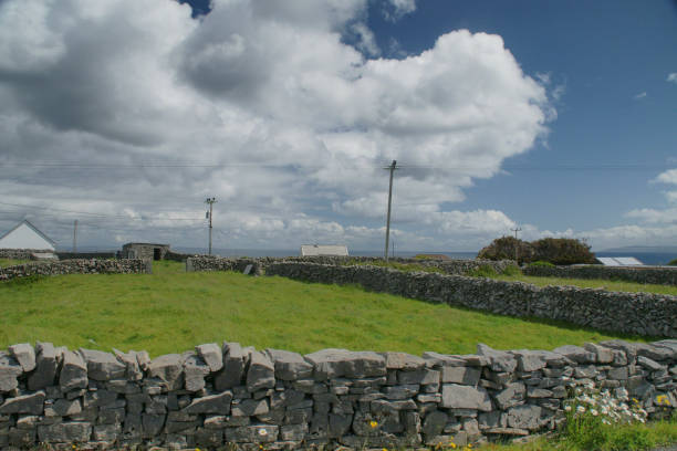 Dry stone walls around field, Inishmore, Aran Islands View of a field enclosed in dry stone walls along Cottage Road out of Kilronan village and looking out over Galway Bay, Inishmore, Aran Islands, County Galway, Ireland michael stephen wills aran stock pictures, royalty-free photos & images