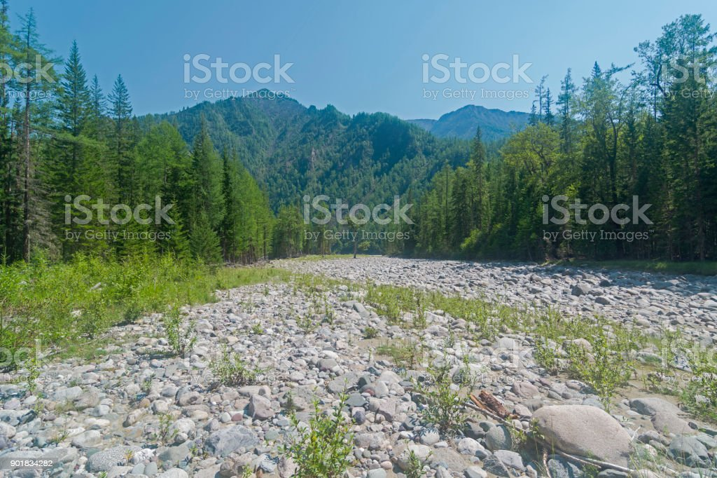 Dry stony river bed. stock photo