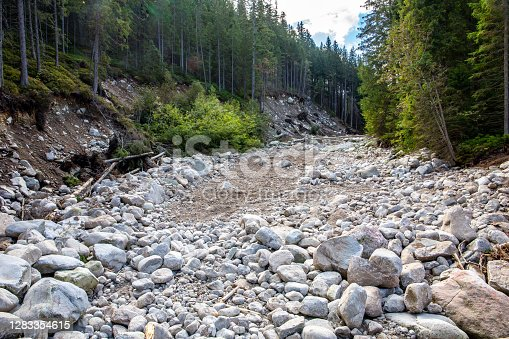 Dry stony riverbed in coniferous forest in Tatra Mountains, Poland.