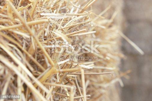 istock Dry straw close up 497411539