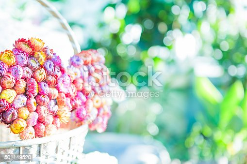 istock Dry straw flower in the bamboo basket 501149520