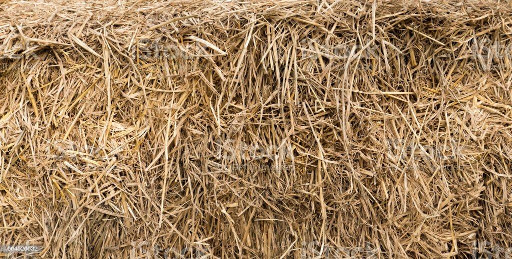 Dry straw royalty-free stock photo