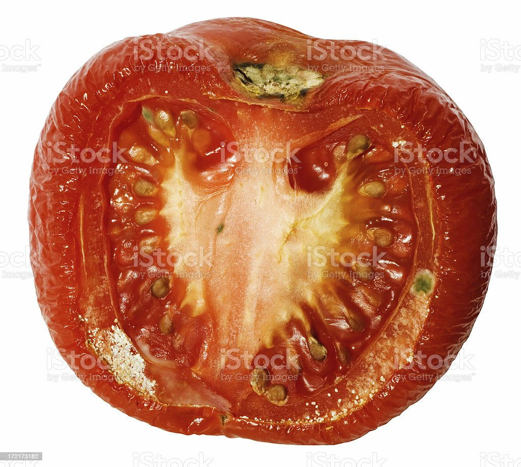 Dry Tomato royalty-free stock photo
