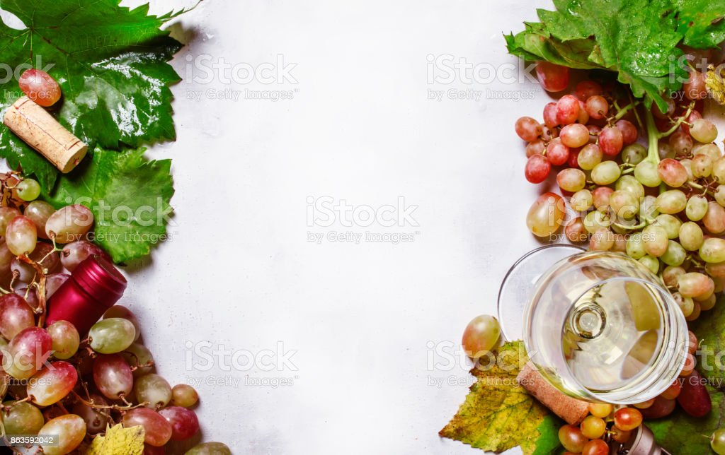 Dry white wine from chardonnay grapes stock photo