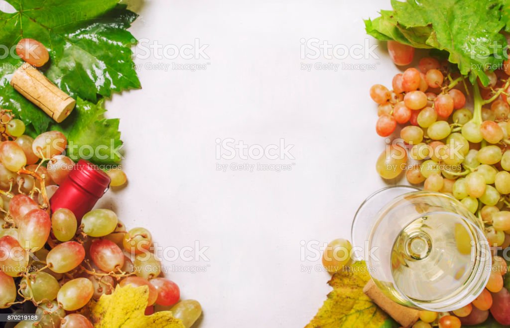 Dry white wine in glass from chardonnay grapes stock photo