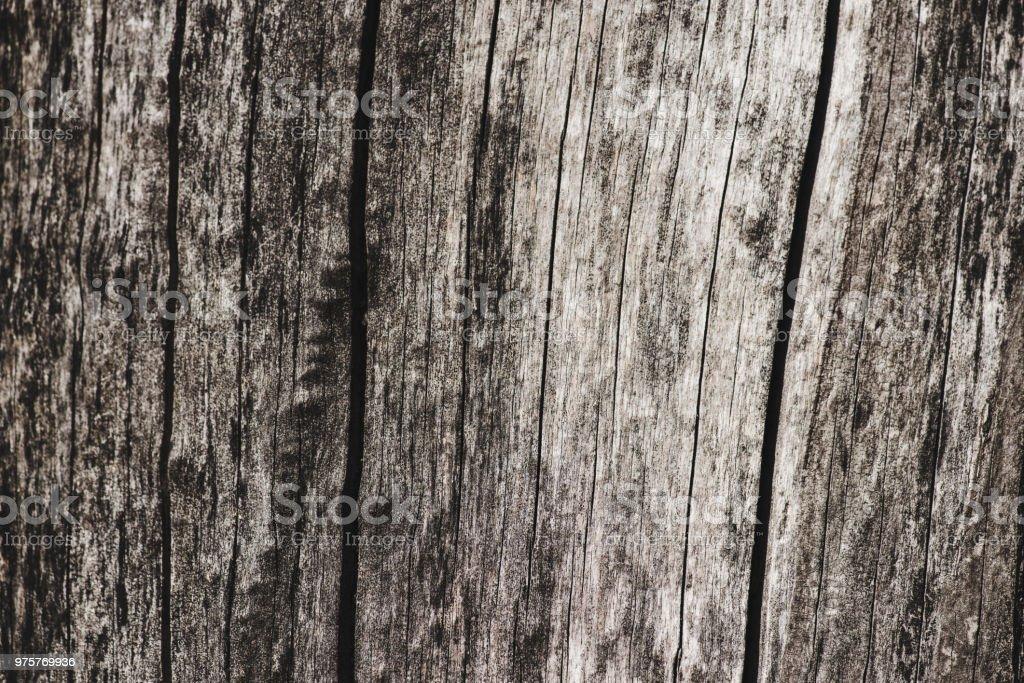 Trockenes Holz mit Textur mit Risse Hintergrund - Lizenzfrei Ausgedörrt Stock-Foto