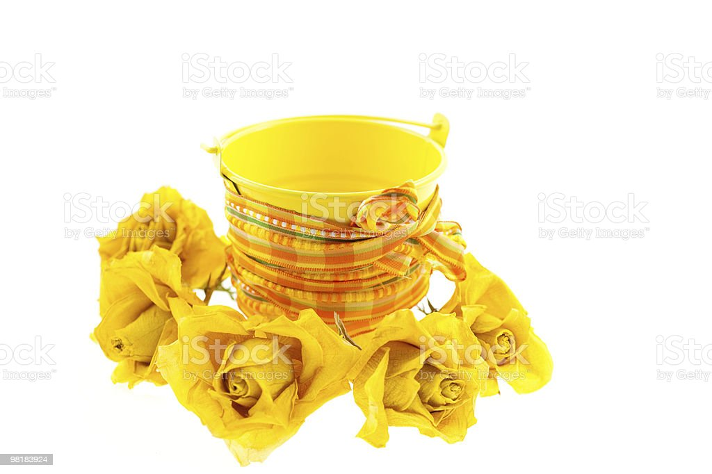 dry yellow roses and bucket with orange ribbon royalty-free stock photo