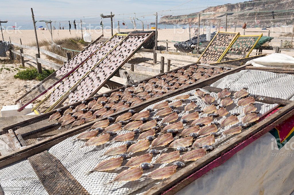 Drying and Selling Fish in Nazare stock photo