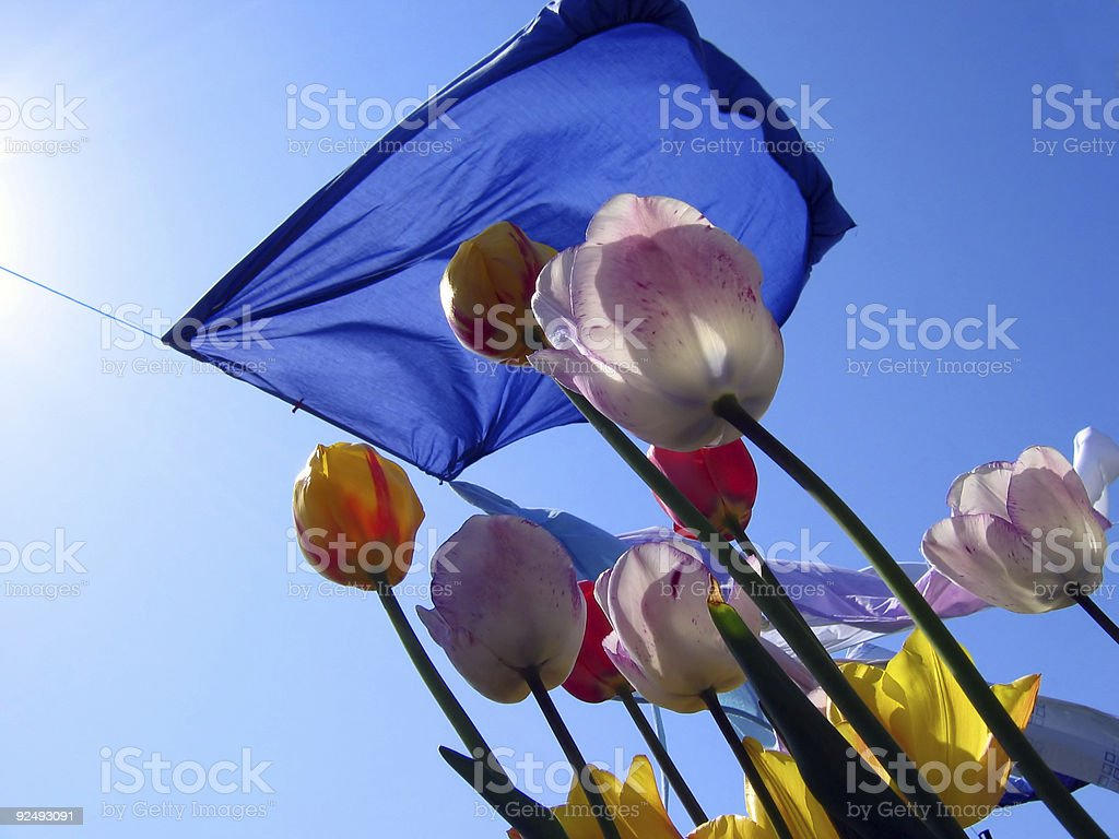 drying day royalty-free stock photo