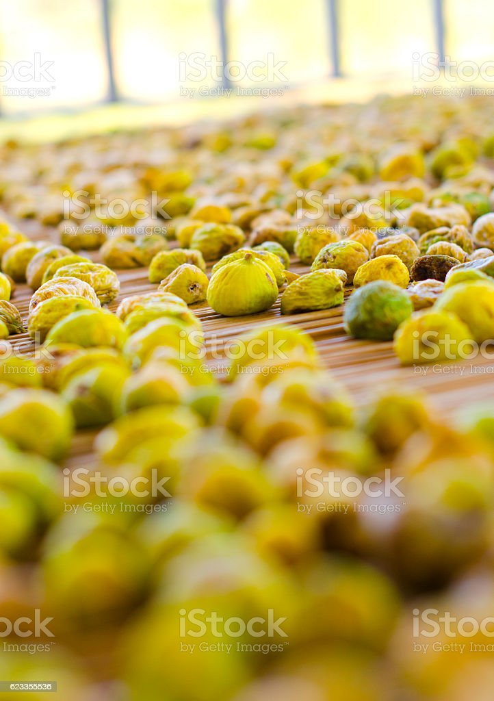 Drying fig on sticks stock photo