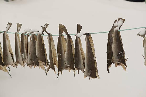 Trocknen Fisch-stockfish – Foto