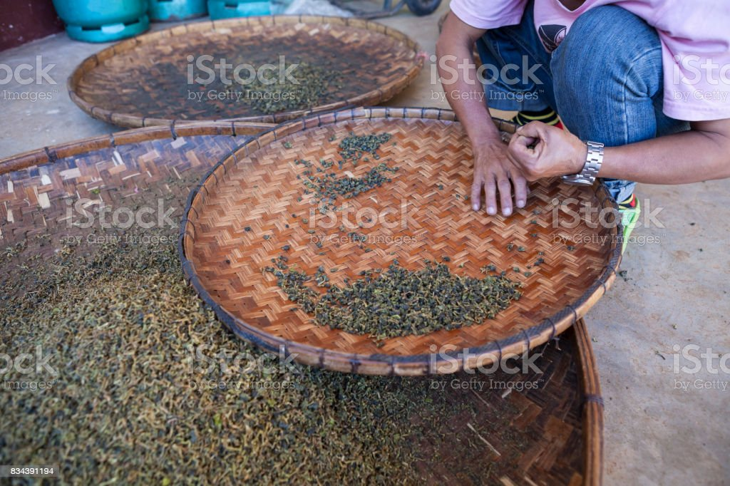 drying green tea in pan processing by hand in motion stock photo