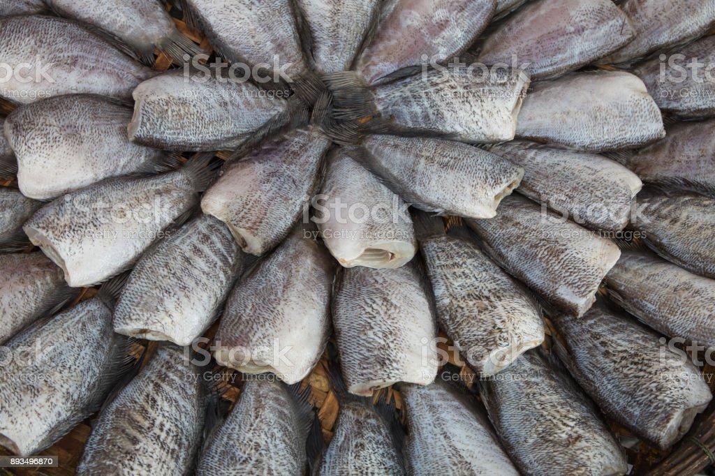 Drying snakeskin gourami fishes stock photo