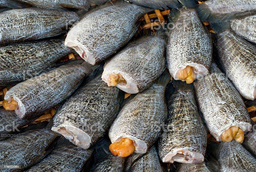 drying snakeskin gourami fishs royalty-free stock photo