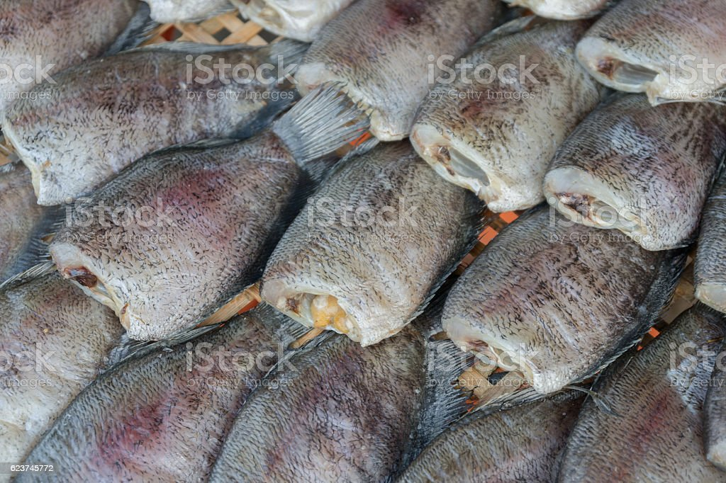 drying snakeskin gourami fishs stock photo