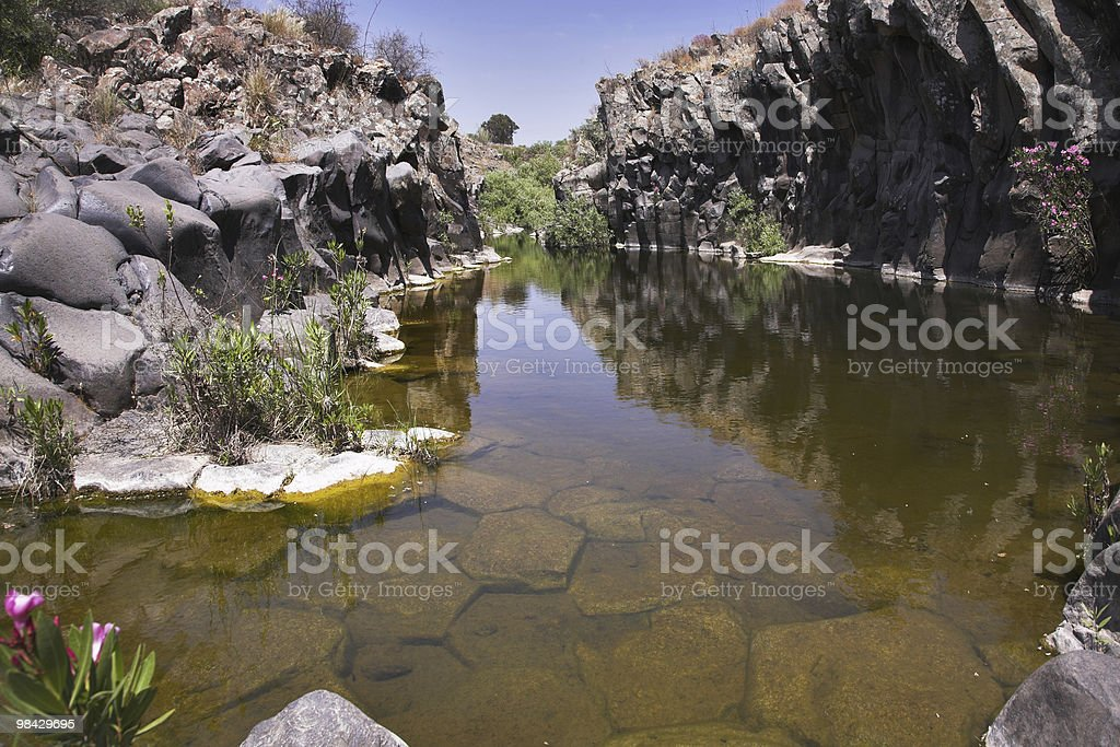 Drying up stream royalty-free stock photo