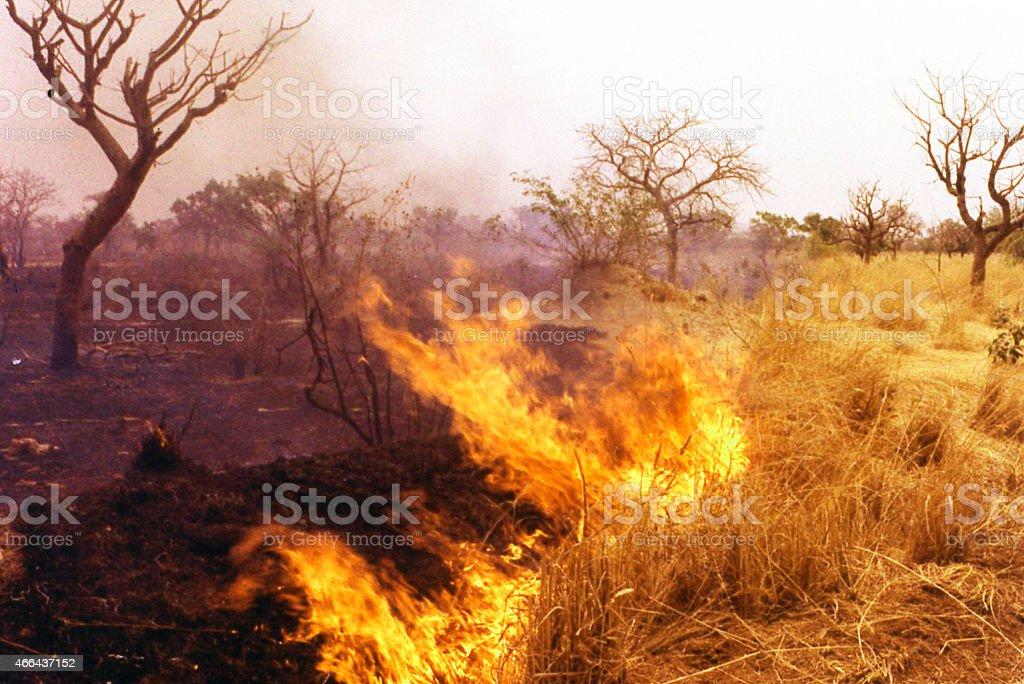 Dry-season Fires Sudanian savanna central Burkina Faso West Africa stock photo